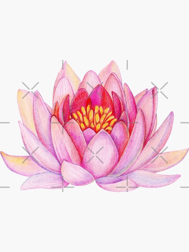 Pink lotus flower by alenazenart