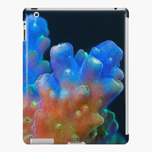 Acropora iPad Snap Case