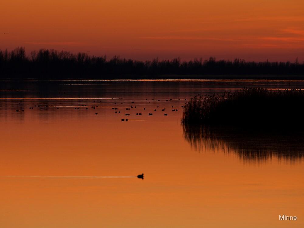 Lake Lauwersmeer by Minne
