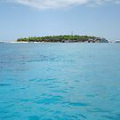 Green Island  by PeaceM