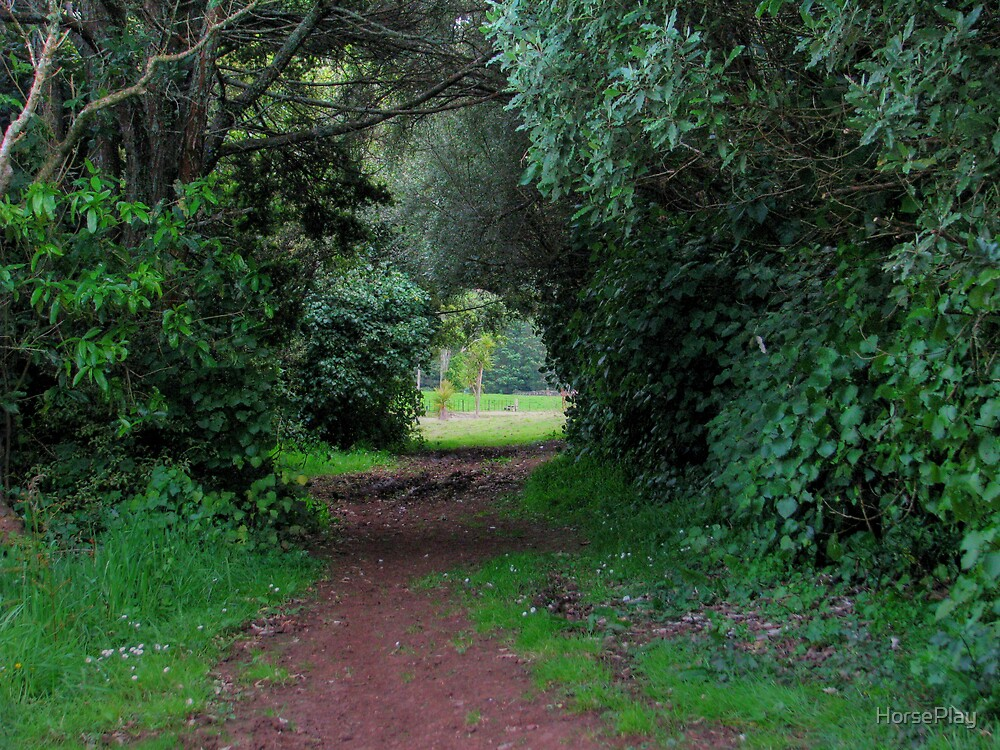 Cross Country Tunnel by HorsePlay