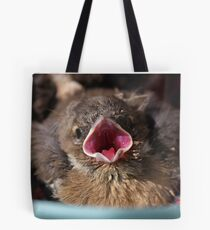 Cute baby chaffinch Tote Bag
