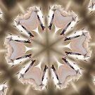 White Arabians Kaleidoscope by Barbara A Lane
