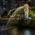Singapore Lion by Paul Campbell  Photography