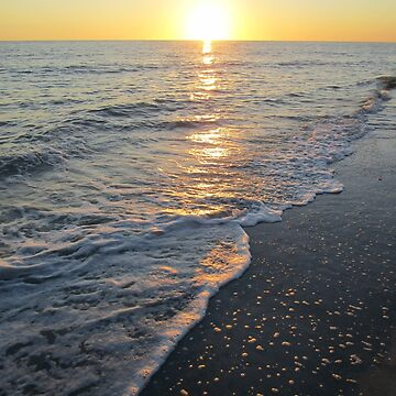Sanibel Sunset by ECPeterson