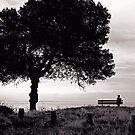 """""""Solitude"""" by Bradley Shawn  Rabon"""