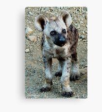 CUTE LITTLE BABY HYAENA - *Spotted Hyaena - Crocuta crocuta* Canvas Print
