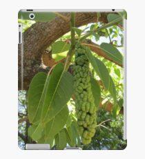 Fruit of the elephant tree iPad Case/Skin