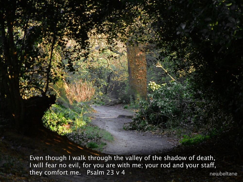 Psalm 23 v 4 by newbeltane