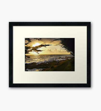 A Walk By the Sea Framed Print