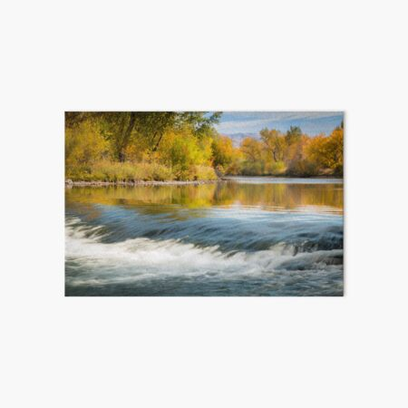 Boise River in the Fall Art Board Print