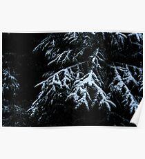 Winter Dark Poster