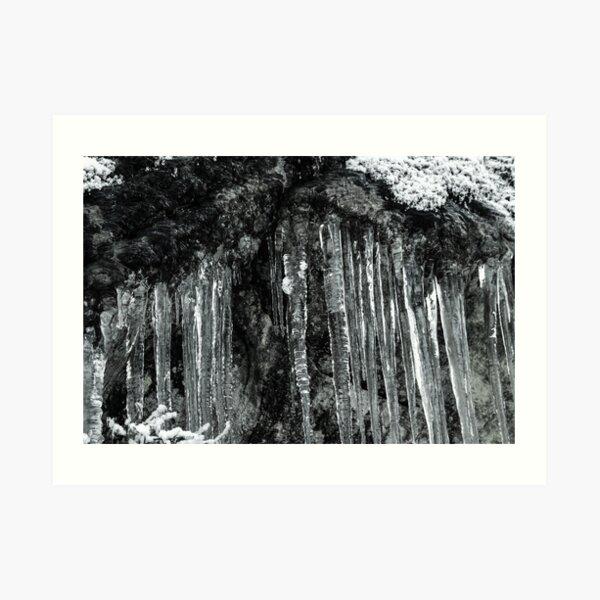 Winter's Tears II Art Print