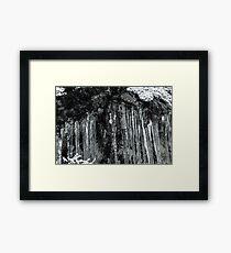 Winter's Tears II Framed Print
