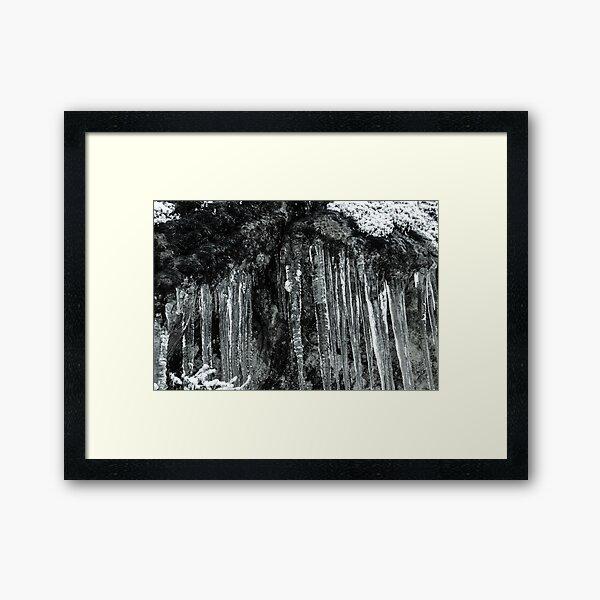 Winter's Tears II Framed Art Print