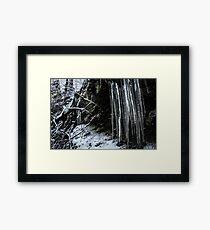 Winter's Tears III Framed Print