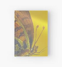Homeward Hardcover Journal
