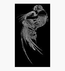 -FINAL FANTASY- Final Fantasy VIII B&W Logo Photographic Print