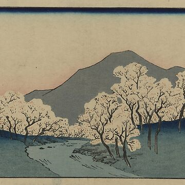 A Grove of Cherry Trees - Japanese pre 1915 Woodblock Print by ashburg