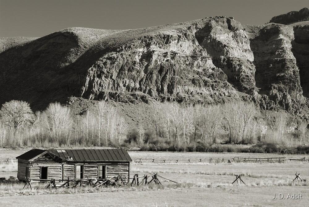Hillside Cabin by J. D. Adsit