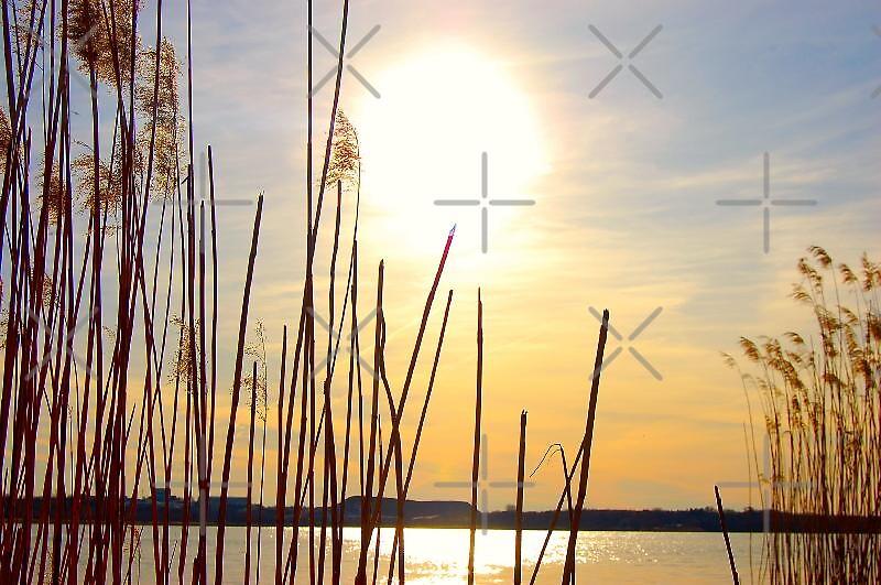 Orange sunset by the lake by loiteke