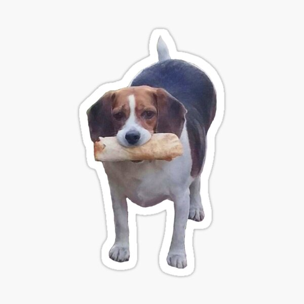 Fat Pupper Eats Burrito Sticker
