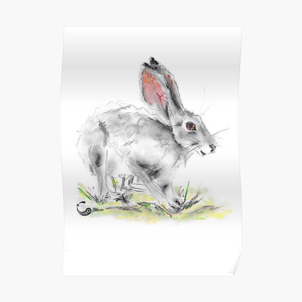 Rabbit - Charcoal Animals Poster