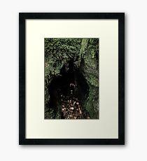 Cave Dweller Framed Print