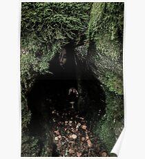 Cave Dweller Poster