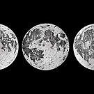 Mond Mondphasen Illustration von Diane LeonardArt