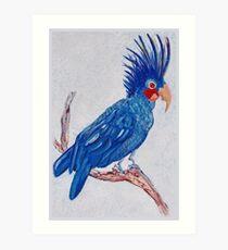 Palm Parrot Art Print