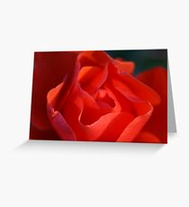 voluptuous Greeting Card