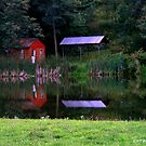 Little Red Cabin by DMWilliams