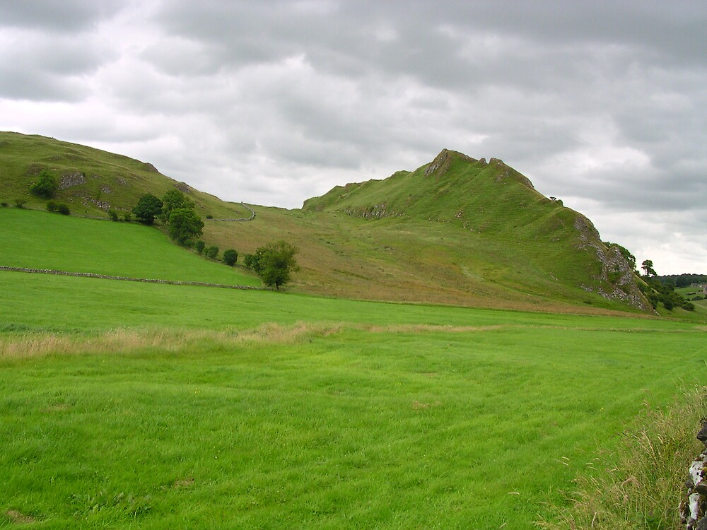 Pointy Hill by BRIAN HOLDEN