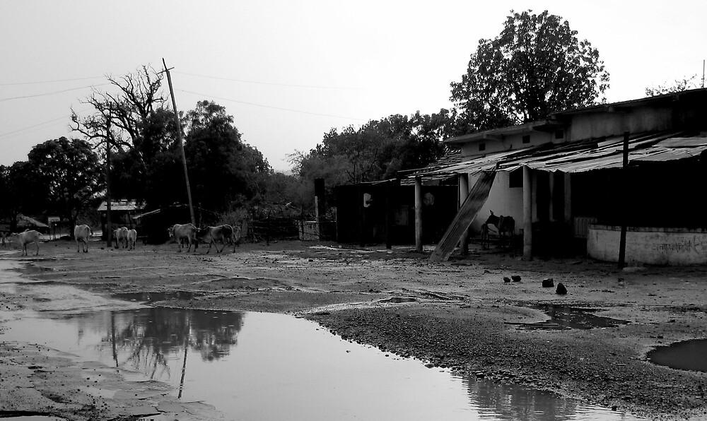 Rain on the road by nisheedhi