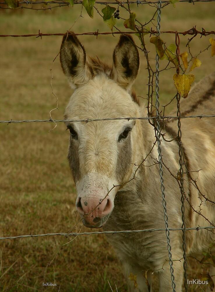 Sundae Donkey headshot by InKibus