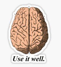 Use It Well Brain Retro - Cool Brain Sticker T-Shirt Pillow Sticker