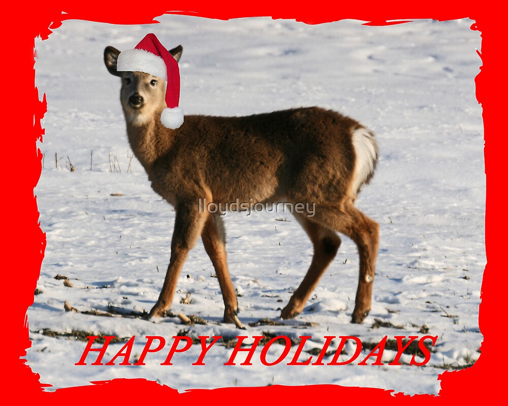 Deer Holiday Card by lloydsjourney