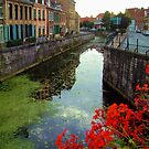 Bergues, near Dunkerque, France. by newbeltane