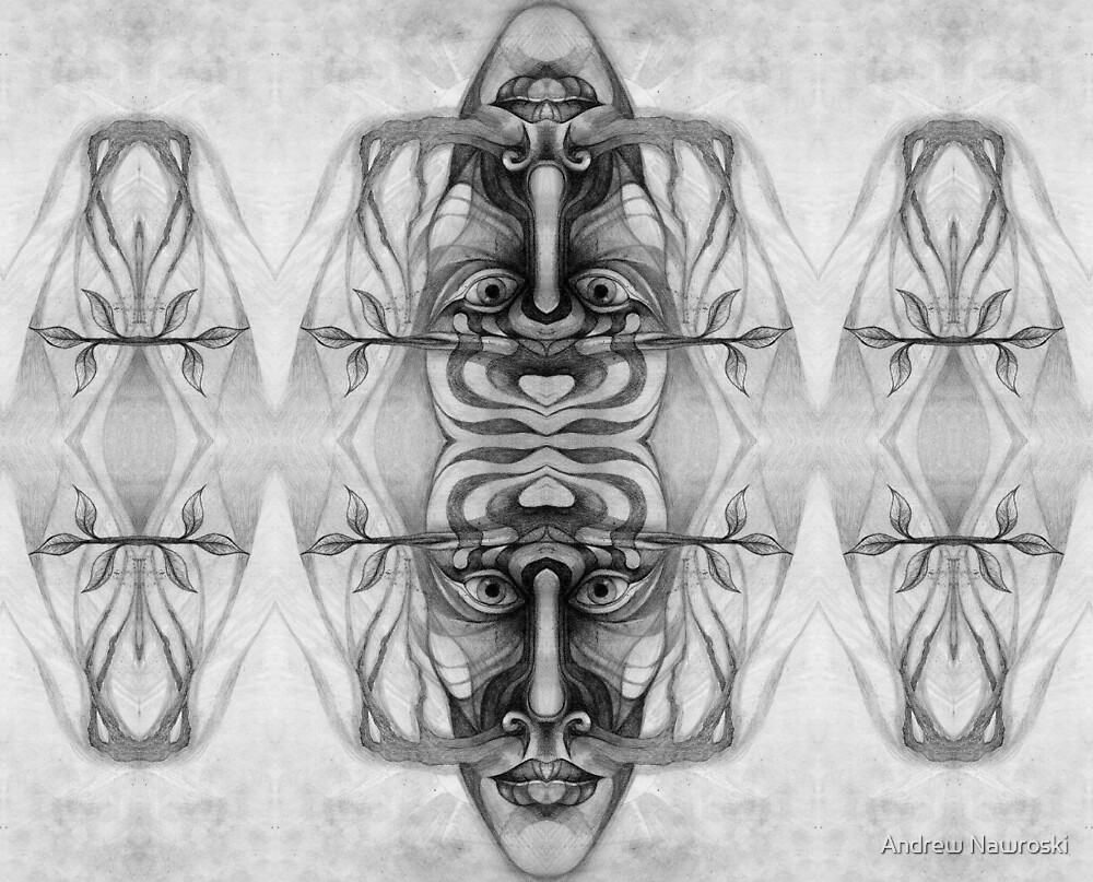 Mirrored drawing 4. by Andrew Nawroski