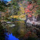 Sugar Creek in the Fall by DMWilliams