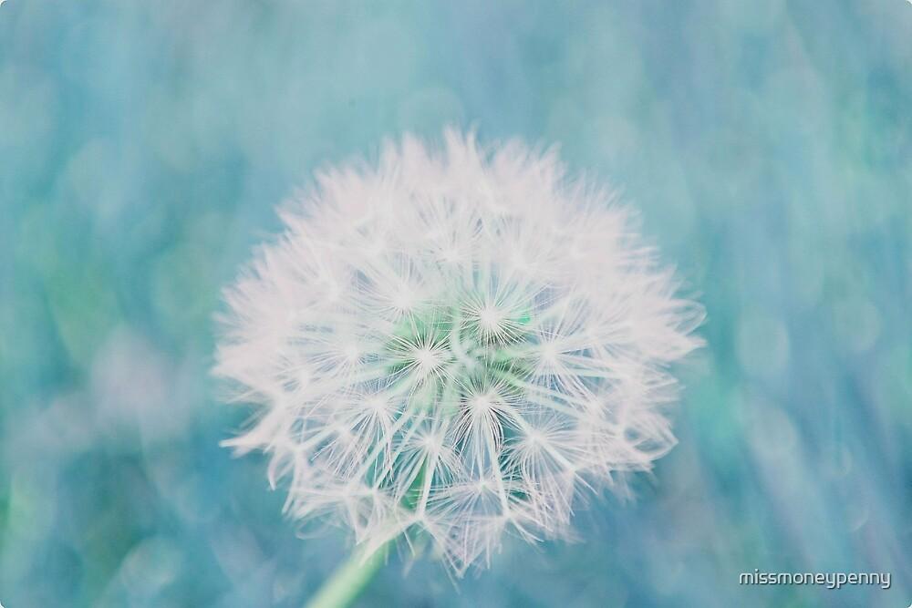 Delicate beauty by missmoneypenny