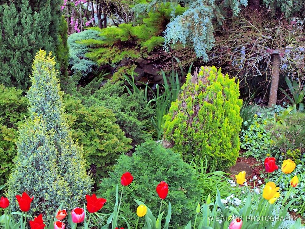 Toowoomba Gardens by W E NIXON  PHOTOGRAPHY