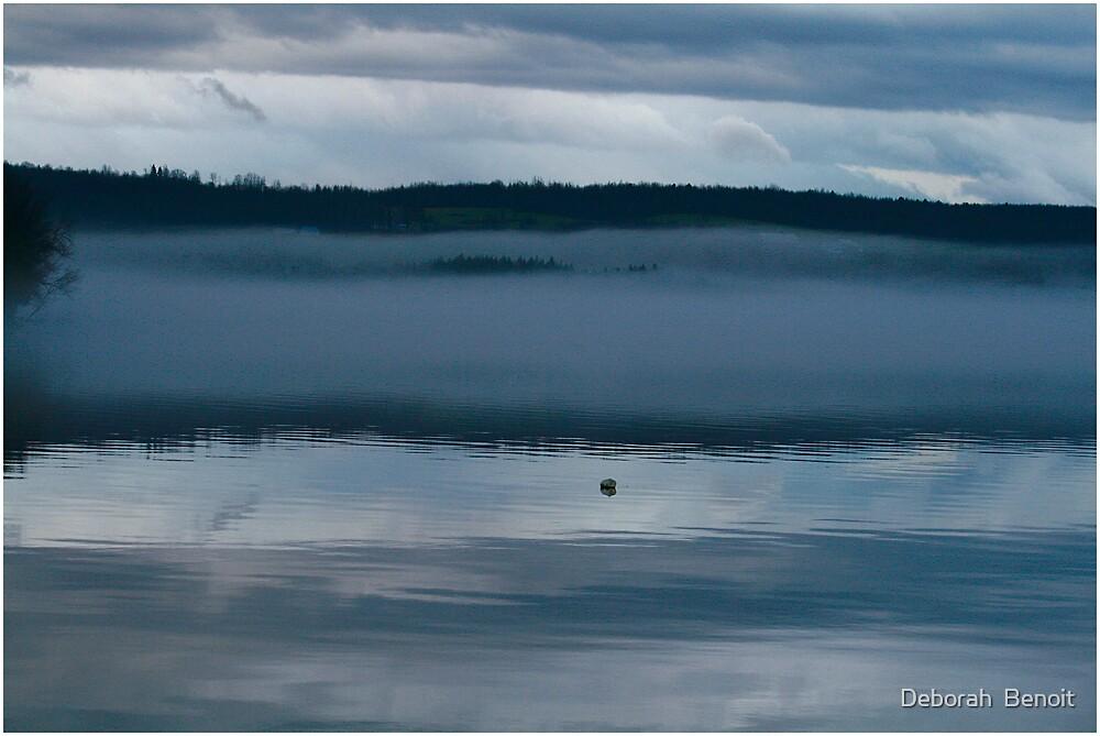 Early Evening Fog by Deborah  Benoit