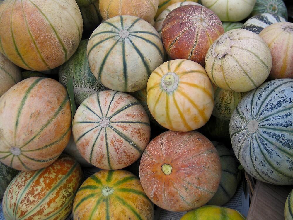 Melons by Nadine Incoll