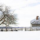 The Craig House in Winter by Debra Fedchin