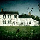 The Craig House II by Debra Fedchin