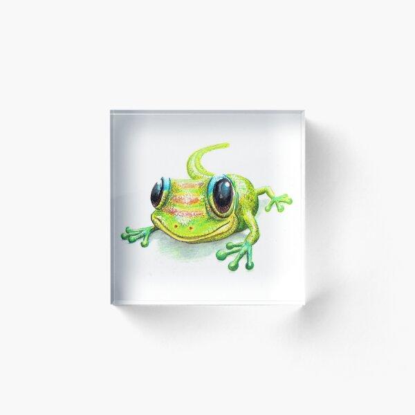 Gold Dust Day Gecko  Acrylic Block