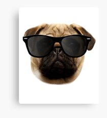 Cool Pug - Funny Pug Gift for Men Women & Kids Canvas Print