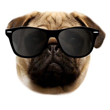 Cool Pug - Funny Pug Gift for Men Women & Kids by ClineProducts